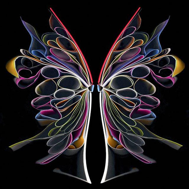 cara-barer-butterfly-24