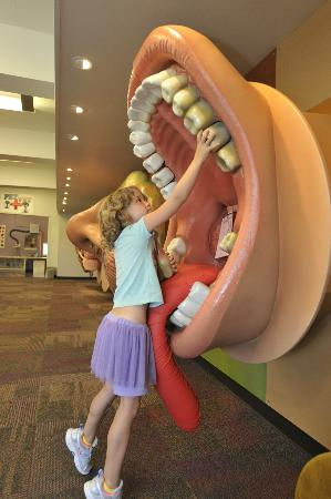 children-s-museum-tucson